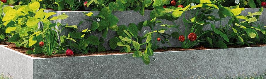 Kit para la siembra de fresas